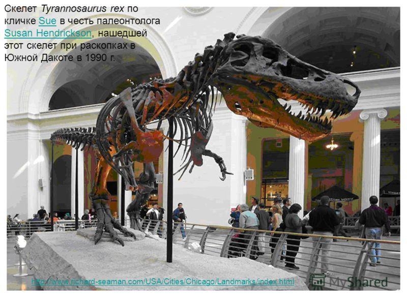 Скелет Tyrannosaurus rex по кличке Sue в честь палеонтолога Susan Hendrickson, нашедшей этот скелет при раскопках в Южной Дакоте в 1990 г.Sue Susan Hendrickson http://www.richard-seaman.com/USA/Cities/Chicago/Landmarks/index.html