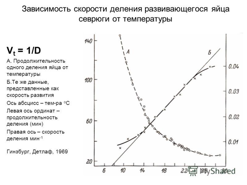 Зависимость скорости деления развивающегося яйца севрюги от температуры V t = 1/D А. Продолжительность одного деления яйца от температуры Б.Те же данные, представленные как скорость развития Ось абсцисс – тем-ра о С Левая ось ординат – продолжительно