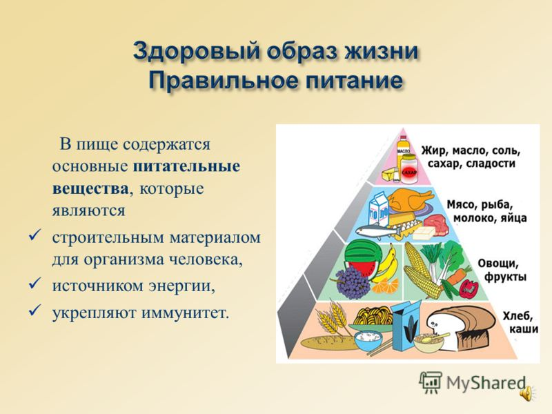 В пище содержатся основные питательные вещества, которые являются строительным материалом для организма человека, источником энергии, укрепляют иммунитет.