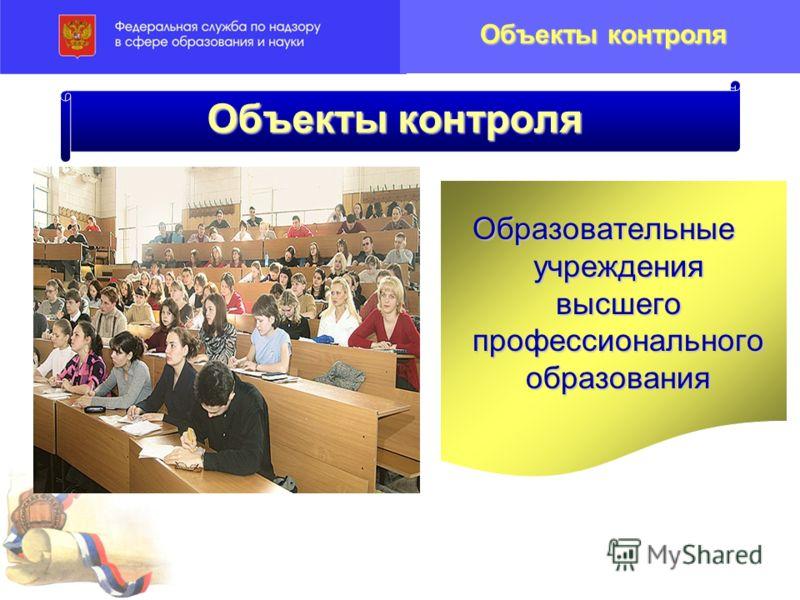 Объекты контроля Образовательные учреждения высшего профессионального образования Объекты контроля