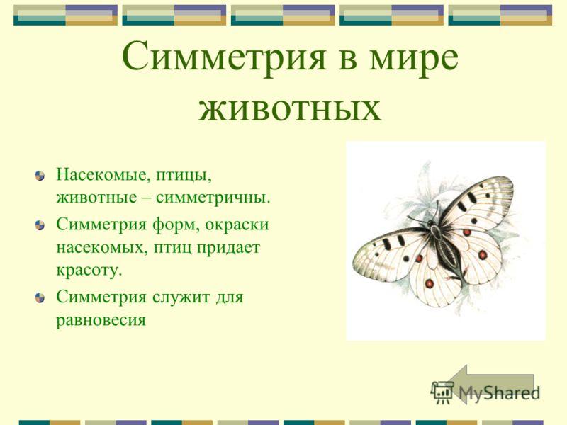 Симметрия в мире животных Насекомые, птицы, животные – симметричны. Симметрия форм, окраски насекомых, птиц придает красоту. Симметрия служит для равновесия
