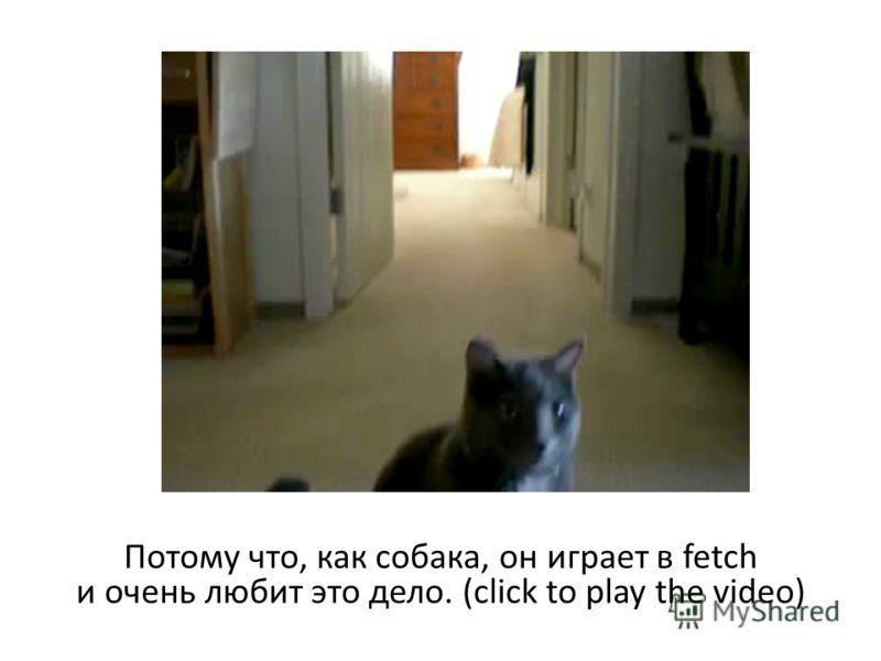 Потому что, как собака, он играет в fetch и очень любит это дело. (click to play the video)