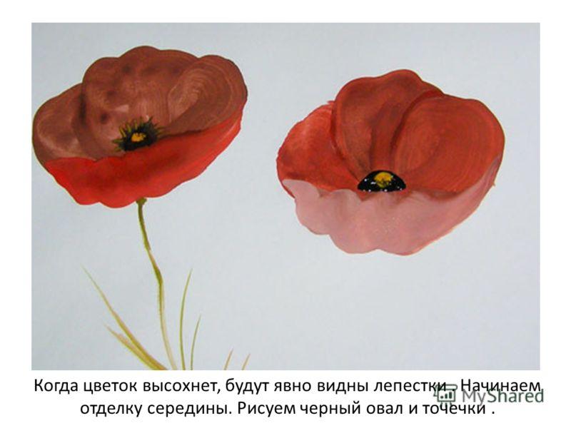 Когда цветок высохнет, будут явно видны лепестки. Начинаем отделку середины. Рисуем черный овал и точечки.