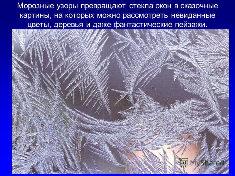Морозные узоры превращают стекла окон в сказочные картины, на которых можно рассмотреть невиданные цветы, деревья и даже фантастические пейзажи.