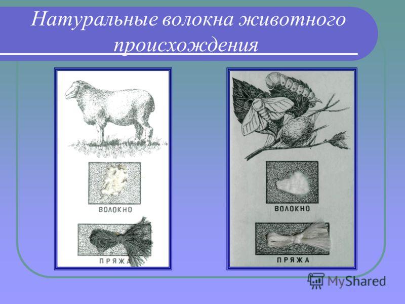 Натуральные волокна животного происхождения