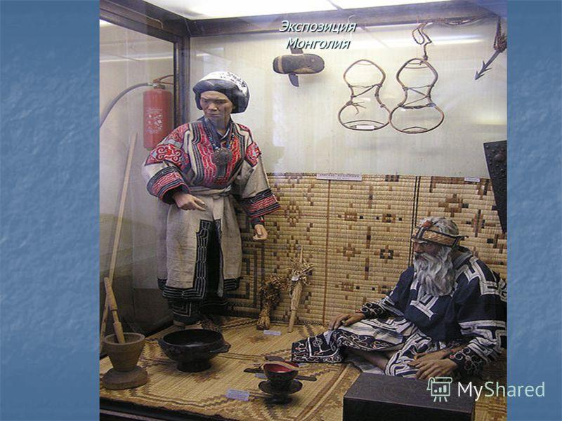 Экспозиция Монголия