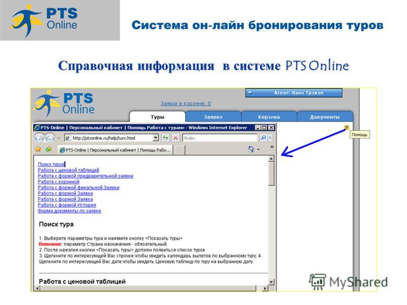 Справочная информация в системе PTS Online