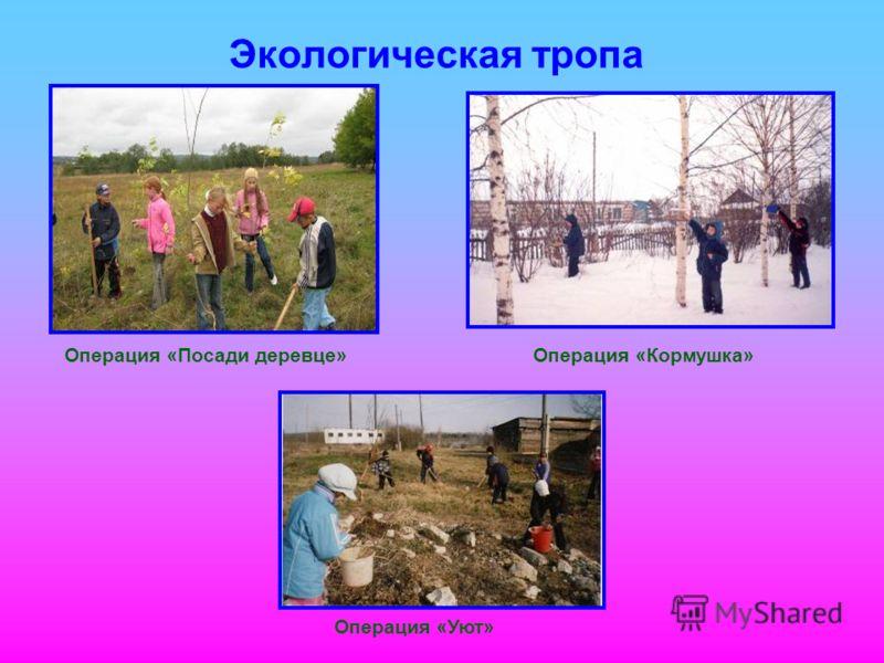 Экологическая тропа Операция «Уют» Операция «Кормушка»Операция «Посади деревце»