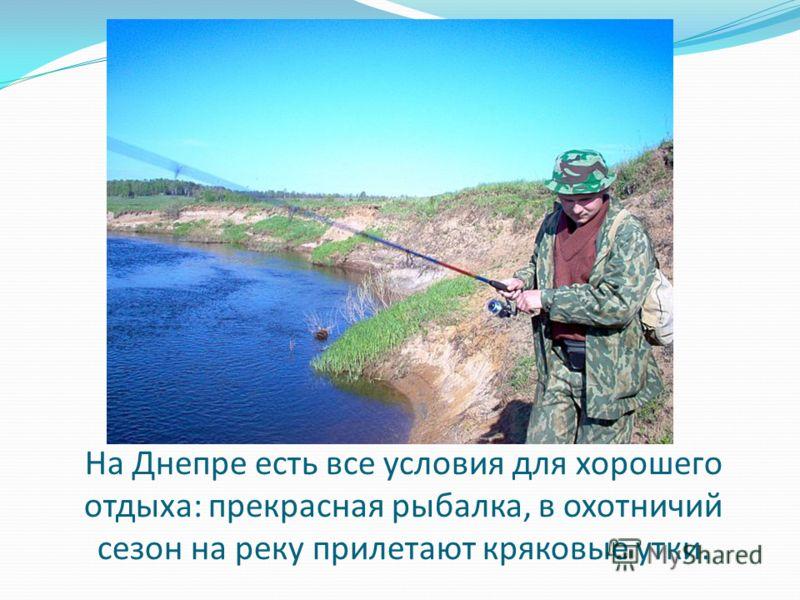 На Днепре есть все условия для хорошего отдыха: прекрасная рыбалка, в охотничий сезон на реку прилетают кряковые утки.