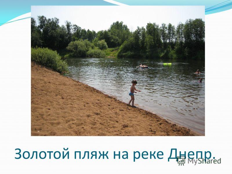 Золотой пляж на реке Днепр.