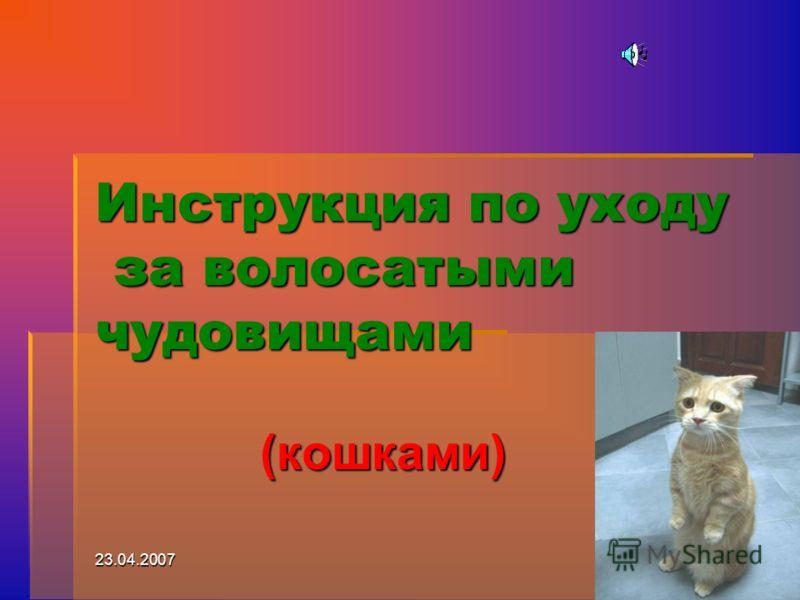 23.04.20071 Инструкция по уходу за волосатыми чудовищами (кошками)