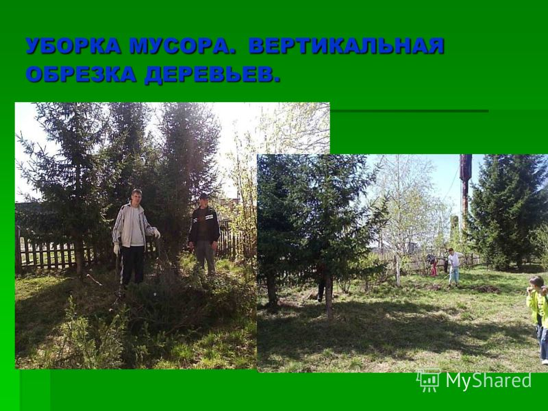 УБОРКА МУСОРА. ВЕРТИКАЛЬНАЯ ОБРЕЗКА ДЕРЕВЬЕВ.
