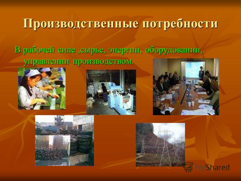 Производственные потребности В рабочей силе,сырье, энергии, оборудовании, управлении производством.