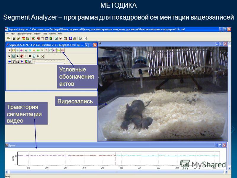 МЕТОДИКА Segment Analyzer – программа для покадровой сегментации видеозаписей Траектория сегментации видео Видеозапись Условные обозначения актов