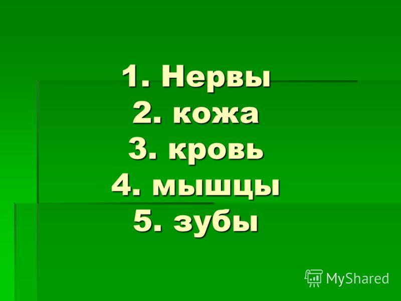 1. Нервы 2. кожа 3. кровь 4. мышцы 5. зубы