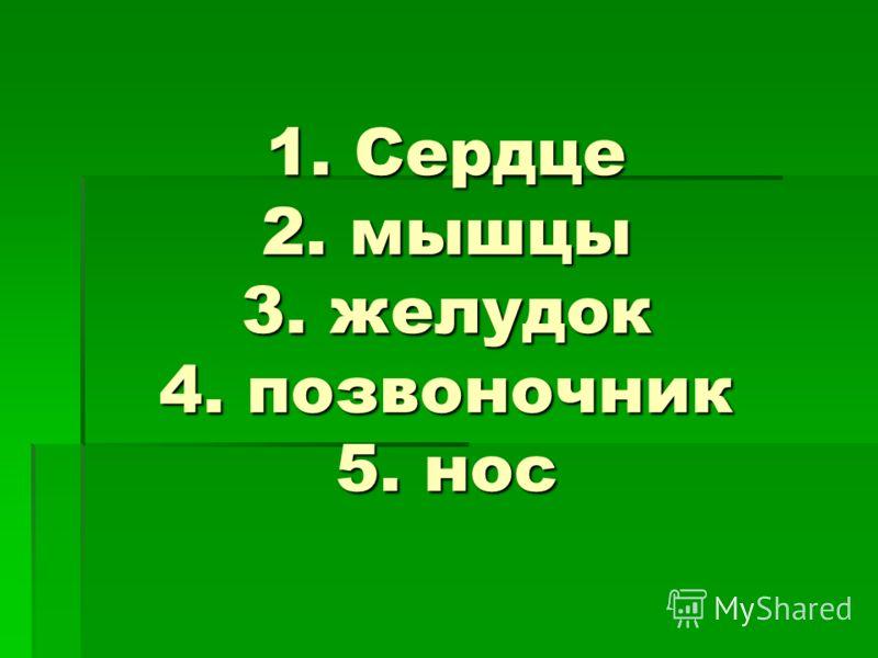 1. Сердце 2. мышцы 3. желудок 4. позвоночник 5. нос