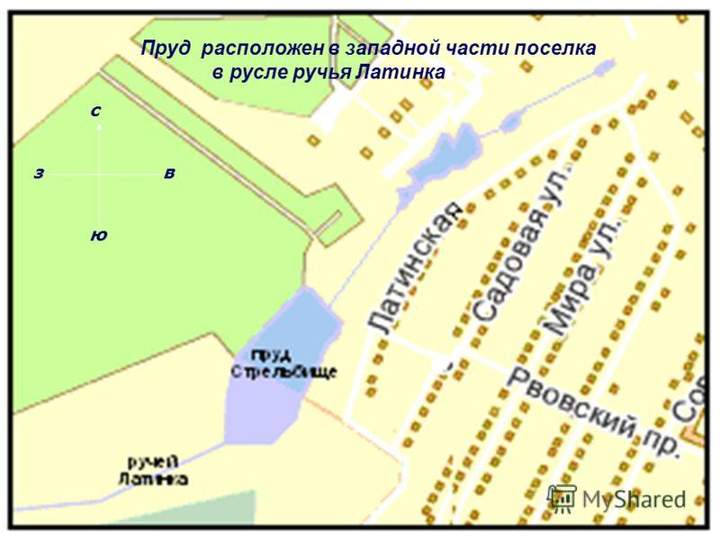 Пруд расположен в западной части поселка Косая Гора в русле реки Латинки. Пруд расположен в западной части поселка в русле ручья Латинка с ю зв