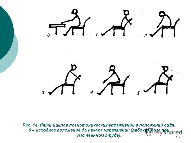 15 Рис. 14. Пять циклов познотонических упражнений в положении сидя. 0 – исходное положение до начала упражнений (рабочая поза при умственном труде).