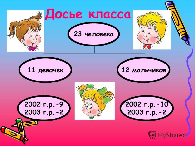 Досье класса 23 человека 11 девочек 2002 г.р.-9 2003 г.р.-2 2002 г.р.-10 2003 г.р.-2 12 мальчиков
