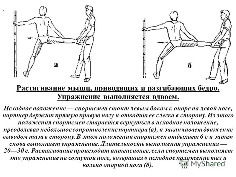 Растягивание мышц, приводящих и разгибающих бедро. Упражнение выполняется вдвоем. Исходное положение спортсмен стоит левым боком к опоре на левой ноге, партнер держит прямую правую ногу и отводит ее слегка в сторону. Из этого положения спортсмен стар