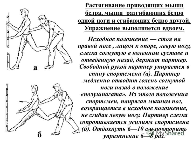 Растягивание приводящих мышц бедра, мышц разгибающих бедро одной ноги и сгибающих бедро другой. Упражнение выполняется вдвоем. Исходное положение стоя на правой ноге, лицом к опоре, левую ногу, слегка согнутую в коленном суставе и отведенную назад, д