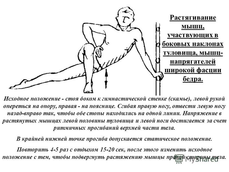 Растягивание мышц, участвующих в боковых наклонах туловища, мышц- напрягателей широкой фасции бедра. Исходное положение - стоя боком к гимнастической стенке (скамье), левой рукой опереться на опору, правая - на пояснице. Сгибая правую ногу, отвести л
