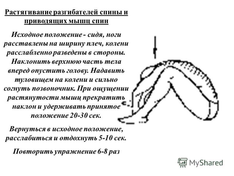 Растягивание разгибателей спины и приводящих мышц спин Исходное положение - сидя, ноги расставлены на ширину плеч, колени расслабленно разведены в стороны. Наклонить верхнюю часть тела вперед опустить голову. Надавить туловищем на колени и сильно сог