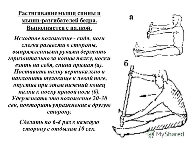 Растягивание мышц спины и мышц-разгибателей бедра. Выполняется с палкой. Исходное положение - сидя, ноги слегка развести в стороны, выпрямленными руками держать горизонтально за концы палку, носки взять на себя, спина прямая (а). Поставить палку верт