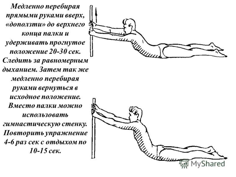 Медленно перебирая прямыми руками вверх, «доползти» до верхнего конца палки и удерживать прогнутое положение 20-30 сек. Следить за равномерным дыханием. Затем так же медленно перебирая руками вернуться в исходное положение. Вместо палки можно использ