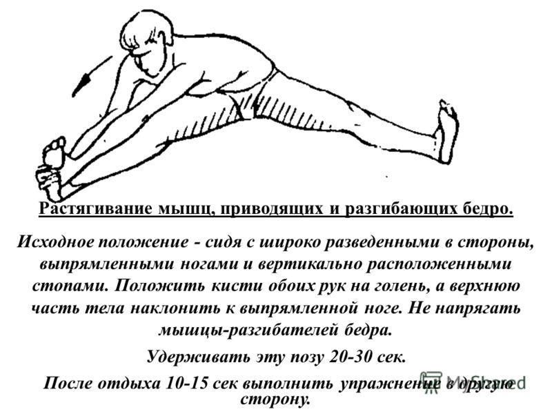 Растягивание мышц, приводящих и разгибающих бедро. Исходное положение - сидя с широко разведенными в стороны, выпрямленными ногами и вертикально расположенными стопами. Положить кисти обоих рук на голень, а верхнюю часть тела наклонить к выпрямленной