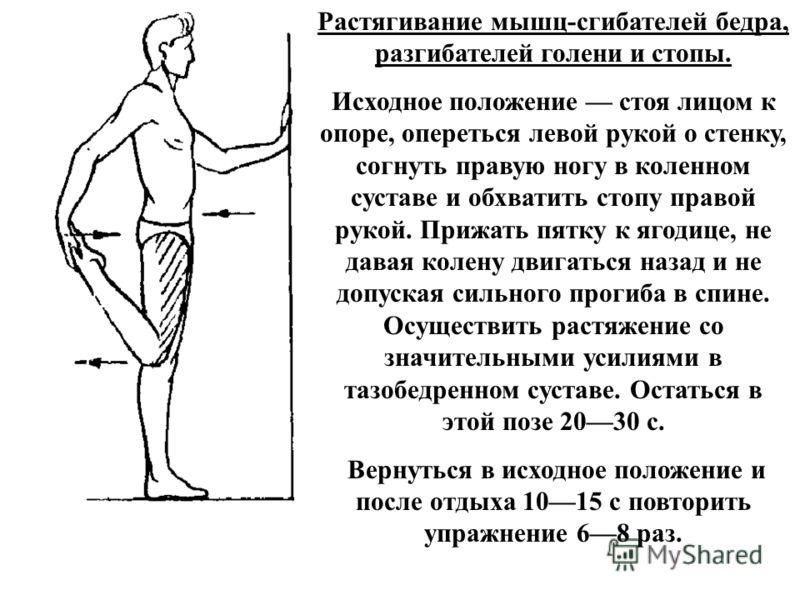 Растягивание мышц-сгибателей бедра, разгибателей голени и стопы. Исходное положение стоя лицом к опоре, опереться левой рукой о стенку, согнуть правую ногу в коленном суставе и обхватить стопу правой рукой. Прижать пятку к ягодице, не давая колену