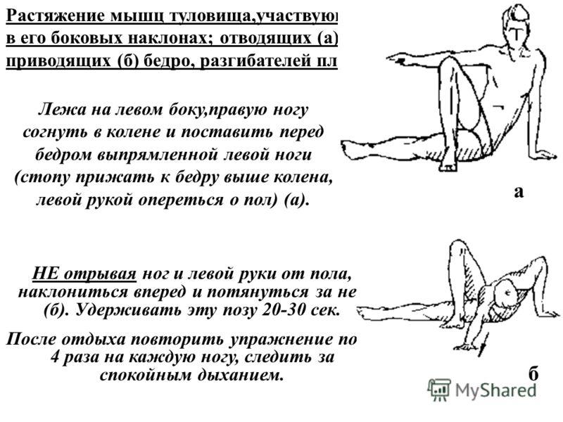 Растяжение мышц туловища,участвующих в его боковых наклонах; отводящих (а) и приводящих (б) бедро, разгибателей плеча. Лежа на левом боку,правую ногу согнуть в колене и поставить перед бедром выпрямленной левой ноги (стопу прижать к бедру выше колена