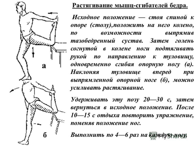 Растягивание мышц-сгибателей бедра. Исходное положение стоя спиной к опоре (столу),положить на него колено, по возможности выпрямив тазобедренный сустав. Затем голень согнутой в колене ноги подтягивать рукой по направлению к туловищу, одновременно с