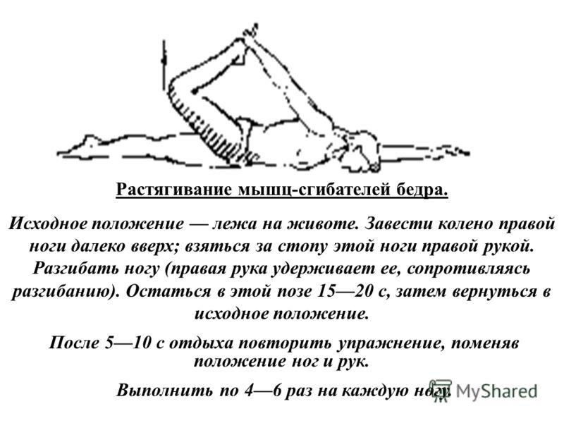 Растягивание мышц-сгибателей бедра. Исходное положение лежа на животе. Завести колено правой ноги далеко вверх; взяться за стопу этой ноги правой рукой. Разгибать ногу (правая рука удерживает ее, сопротивляясь разгибанию). Остаться в этой позе 1520 с