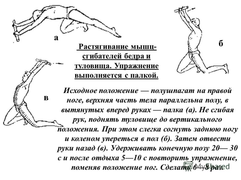 Растягивание мышц- сгибателей бедра и туловища. Упражнение выполняется с палкой. Исходное положение полушпагат на правой ноге, верхняя часть тела параллельна полу, в вытянутых вперед руках палка (а). Не сгибая рук, поднять туловище до вертикального п