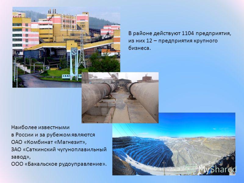 В районе действуют 1104 предприятия, из них 12 – предприятия крупного бизнеса. Наиболее известными в России и за рубежом являются ОАО «Комбинат «Магнезит», ЗАО «Саткинский чугуноплавильный завод», ООО «Бакальское рудоуправление».
