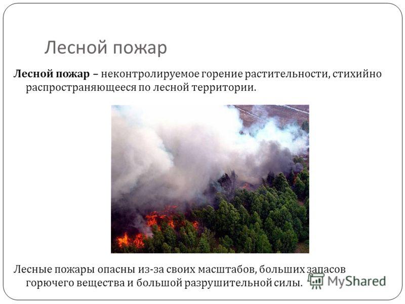 Лесной пожар Лесной пожар – неконтролируемое горение растительности, стихийно распространяющееся по лесной территории. Лесные пожары опасны из-за своих масштабов, больших запасов горючего вещества и большой разрушительной силы.