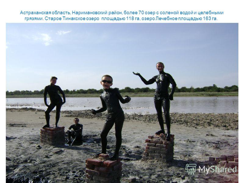 Астраханская область, Наримановский район, более 70 озер с соленой водой и целебными грязями. Старое Тинакское озеро площадью 118 га, озеро Лечебное площадью 163 га.