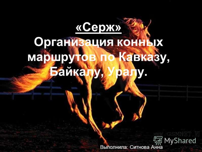 «Серж» Организация конных маршрутов по Кавказу, Байкалу, Уралу. Выполнила: Ситнова Анна
