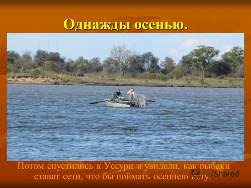 Однажды осенью. Потом спустились к Уссури и увидели, как рыбаки ставят сети, что бы поймать осеннею кету.