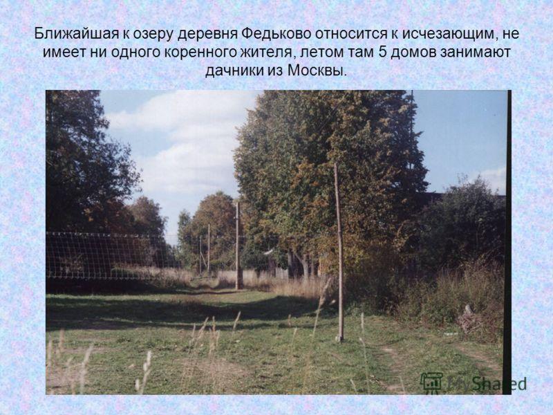 Ближайшая к озеру деревня Федьково относится к исчезающим, не имеет ни одного коренного жителя, летом там 5 домов занимают дачники из Москвы.