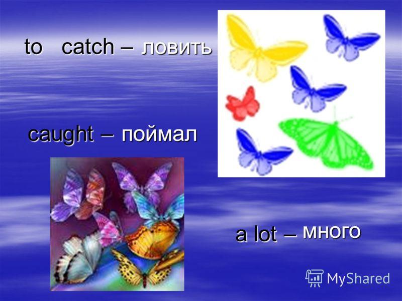 to catch – ловить caught – поймал a lot – много