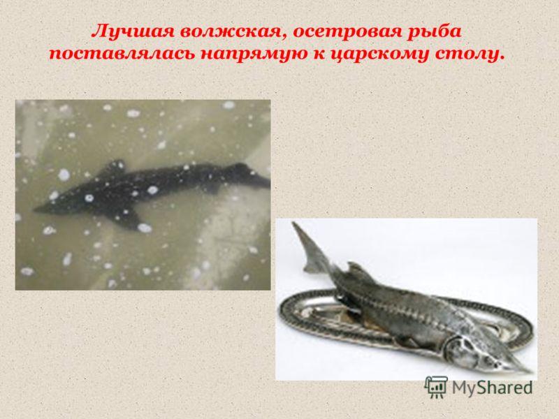 Лучшая волжская, осетровая рыба поставлялась напрямую к царскому столу.