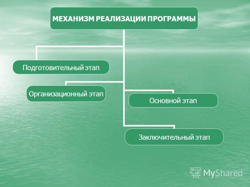 МЕХАНИЗМ РЕАЛИЗАЦИИ ПРОГРАММЫ Подготовительный этап Организационный этап Основной этап Заключительный этап