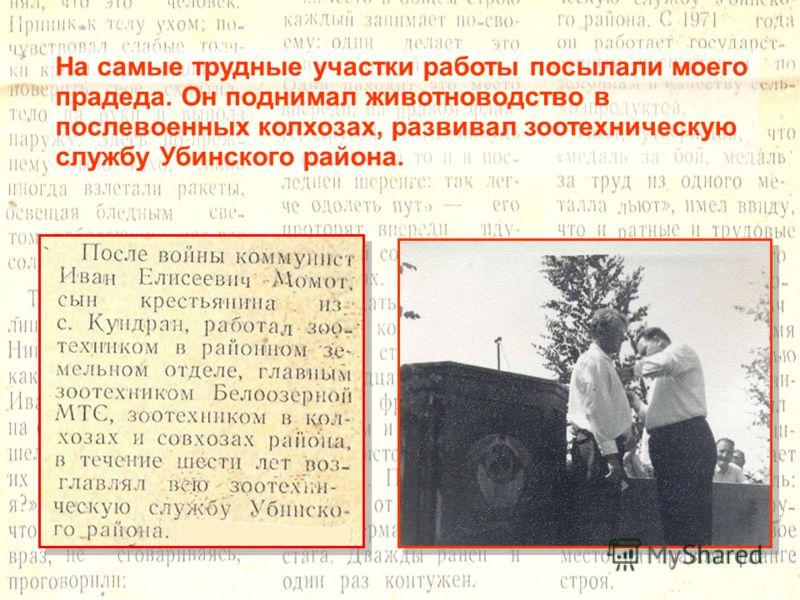 На самые трудные участки работы посылали моего прадеда. Он поднимал животноводство в послевоенных колхозах, развивал зоотехническую службу Убинского района.