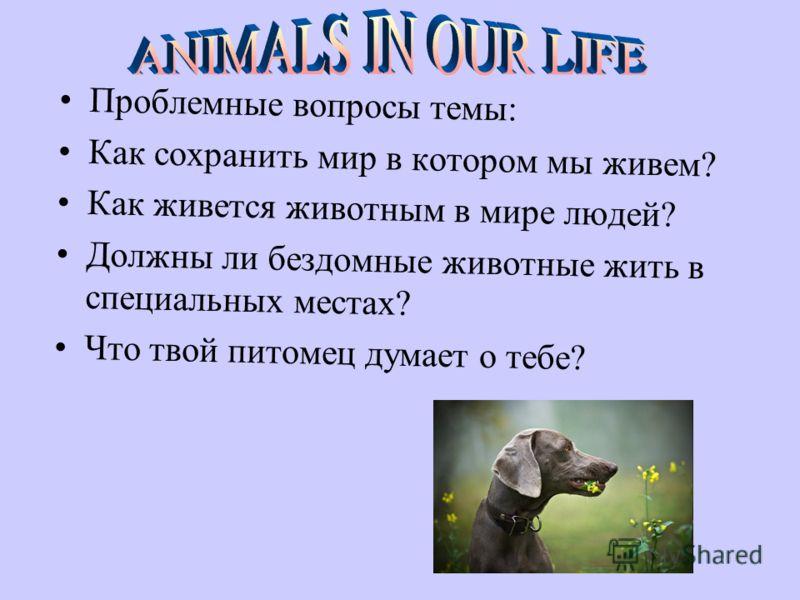 Проблемные вопросы темы: Как сохранить мир в котором мы живем? Как живется животным в мире людей? Должны ли бездомные животные жить в специальных местах? Что твой питомец думает о тебе?