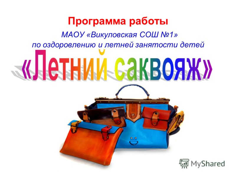 Программа работы МАОУ «Викуловская СОШ 1» по оздоровлению и летней занятости детей
