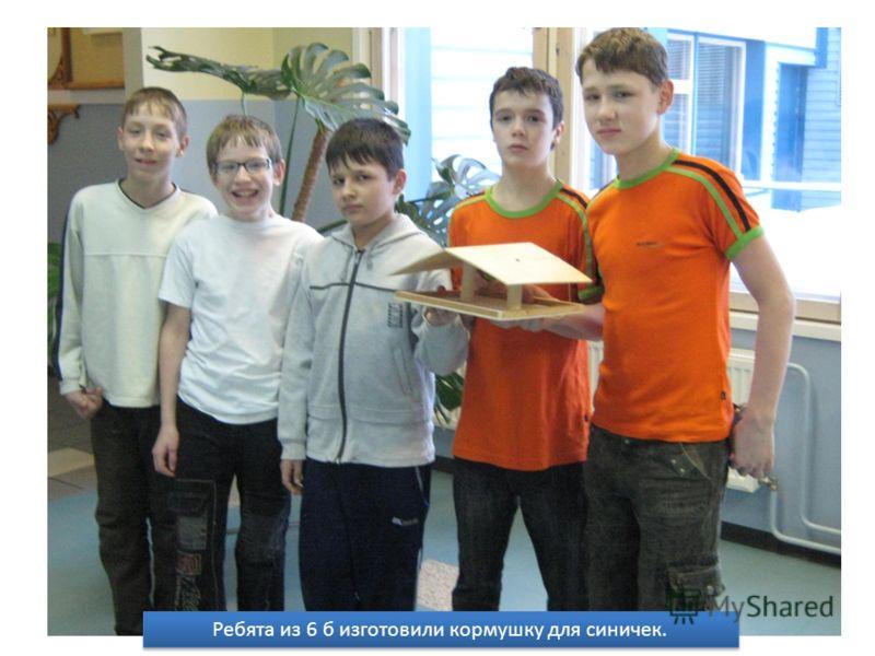 Ребята из 6 б изготовили кормушку для синичек.