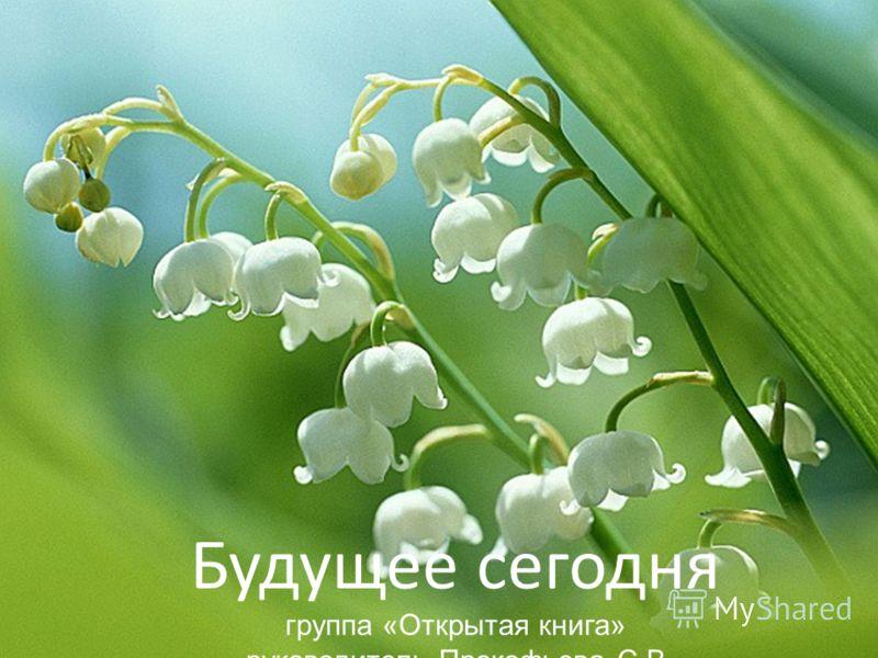 Будущее сегодня группа «Открытая книга» руководитель Прокофьева С.В.