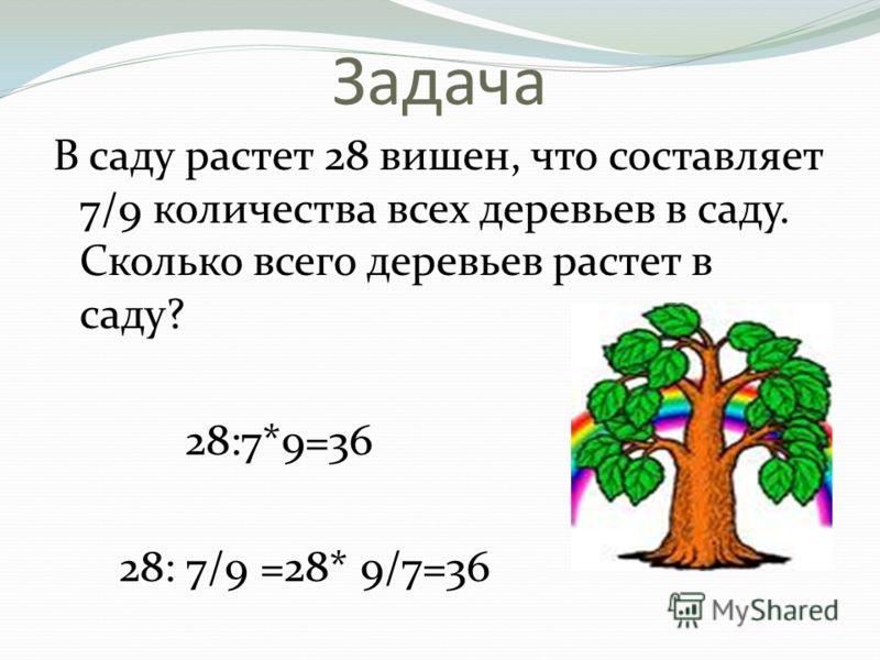 Задача В саду растет 28 вишен, что составляет 7/9 количества всех деревьев в саду. Сколько всего деревьев растет в саду? 28:7*9=36 28: 7/9 =28* 9/7=36